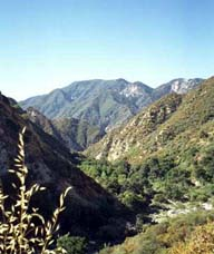Tujunga Canyons - A remote and desolate area.
